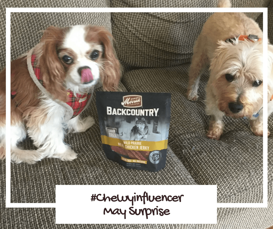Merrick's Backcountry Wild Prairie real chicken jerky treats