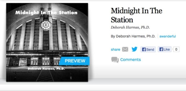 MidnightInTheStation-760