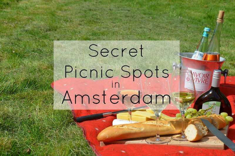Secret Picnic Spots in Amsterdam