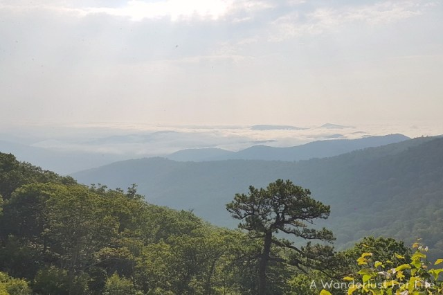Mountains of the Shenandoah Valley