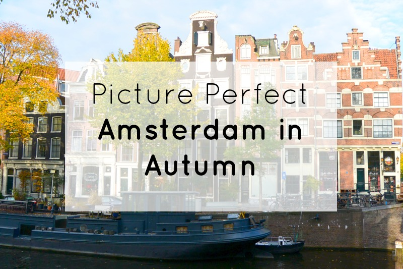 Picture Perfect Amsterdam in Autumn