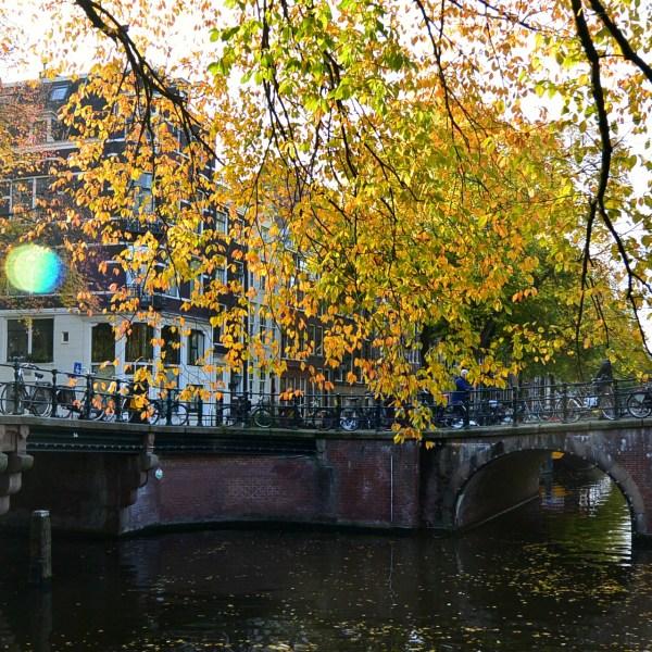 Amsterdam bridge in Autumn