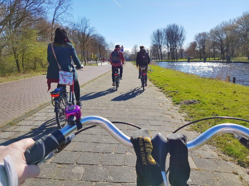Cycling through the Dutch countryside