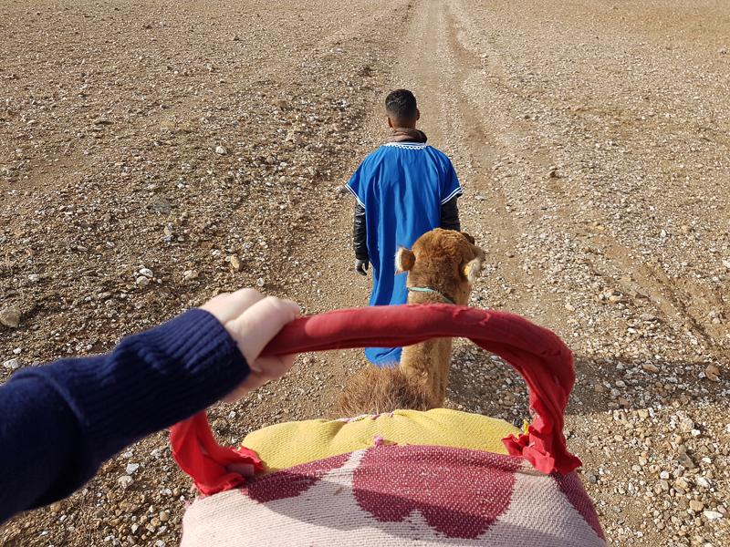 Jess riding a camel outside Marrakech
