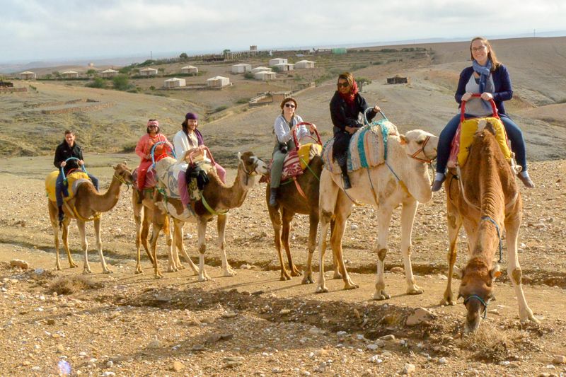 group riding camels in the desert