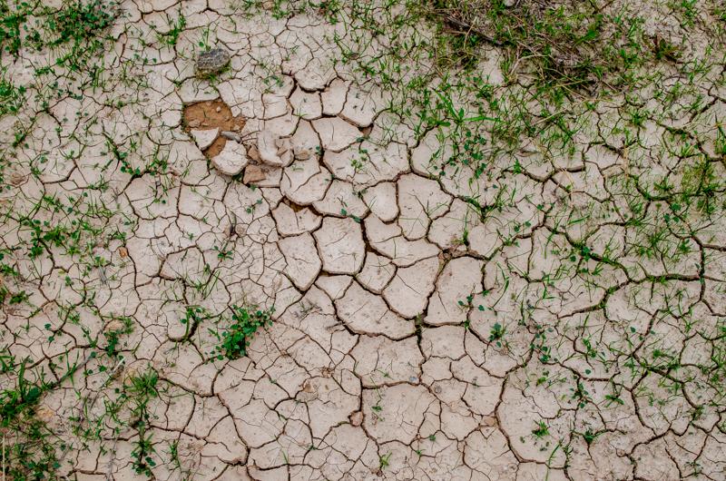 terre des etoiles ground