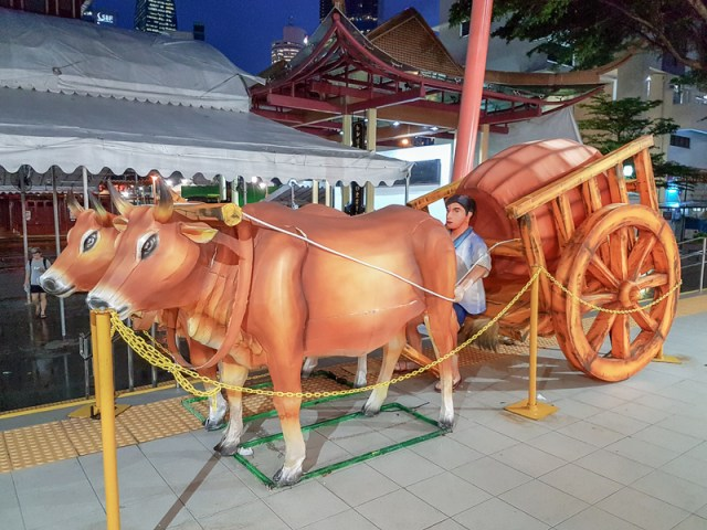 Oxen in Chinatown