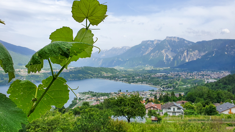 View in Trentino