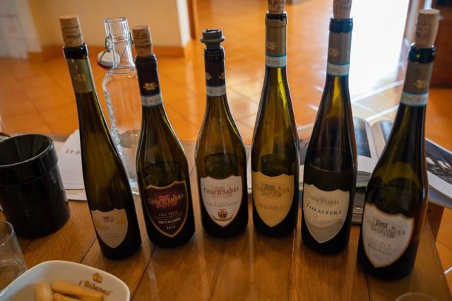 Casa dambra wine tasting