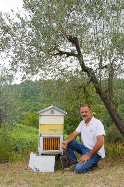 Beekeeper in Tuscany