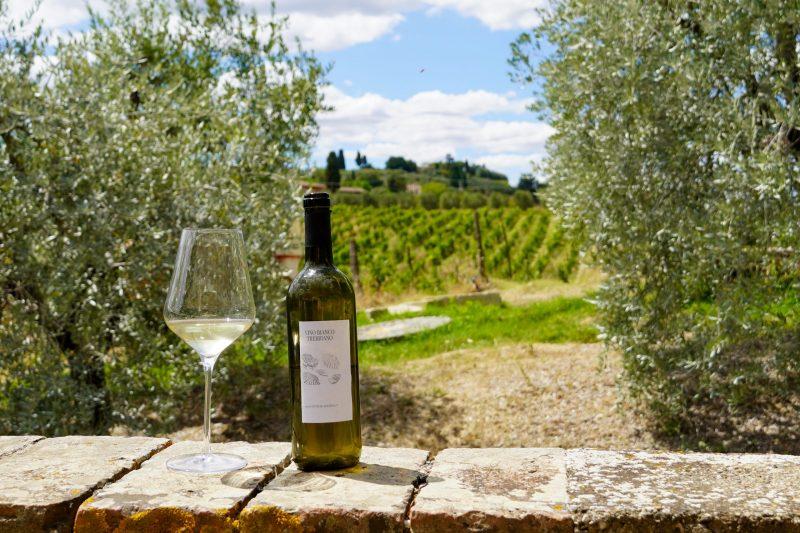 Wine at Fattoria le Caprine