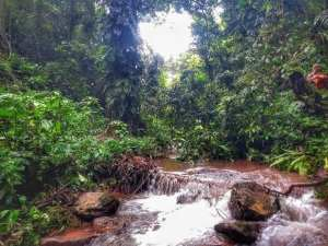 The beautiful nature of Luang Nam Tha, Laos