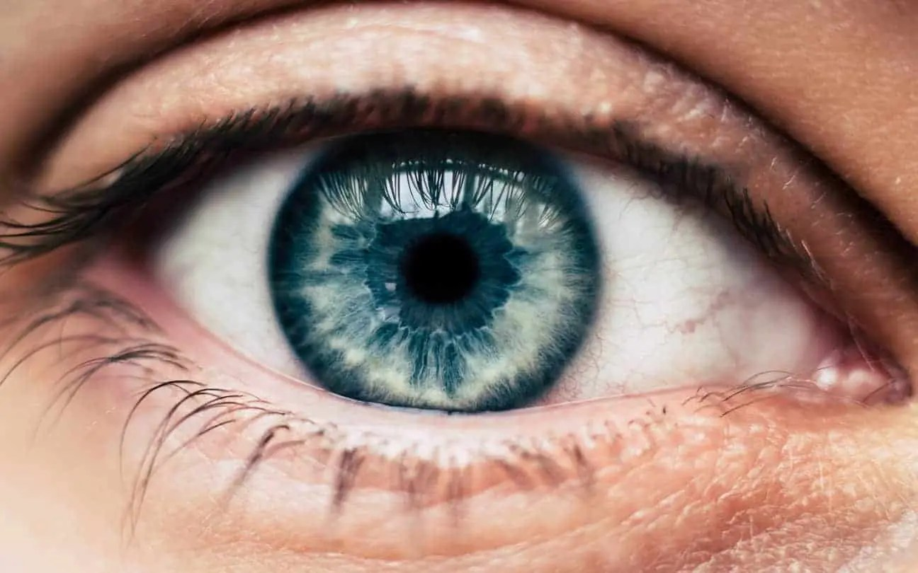 Eye Injury Prevention Month