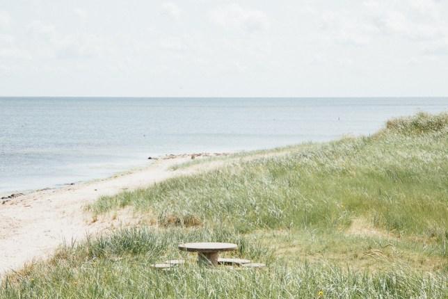 summerbreak at Texel
