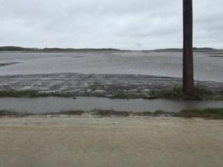 Acres of flooded farmland between Winnipeg & Portage la Prairie.
