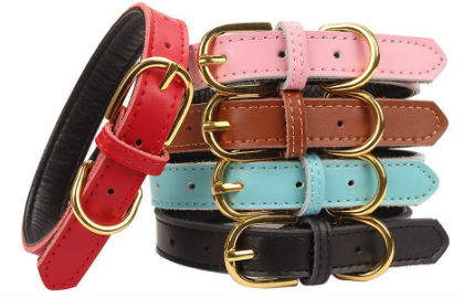 Aolove Basic Classic Padded Leather Pet Collar