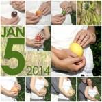 Babies Everywhere: Creative Pregnancy Announcements