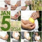 Babies Everywhere: Creative Pregnancy Announcements