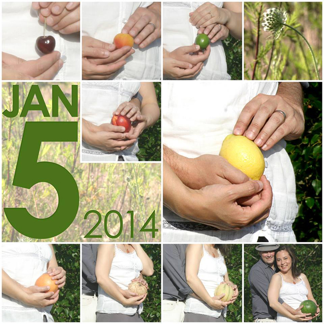 My best friend and her awesome hubby took these photos themselves and then put the collage together.