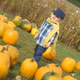 Fall Tradition of the Pumpkin Patch and Toddler Style