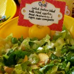 Opal Apple & Grilled Chicken Salad // A Well Crafted Party