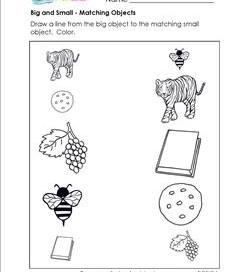 Classifying And Categorizing Worksheets For Kindergarten