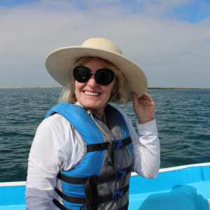 Whale Watching in The Baja
