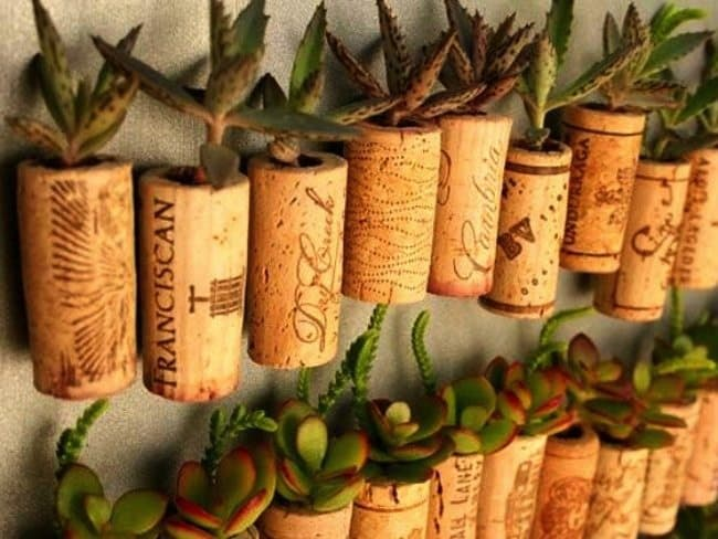 14 Creative Ways To Reuse Kitchen Waste Youve Probably