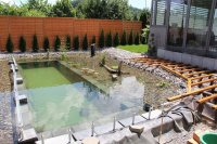 This Guy's Ambitious Project For His Backyard Actually ...