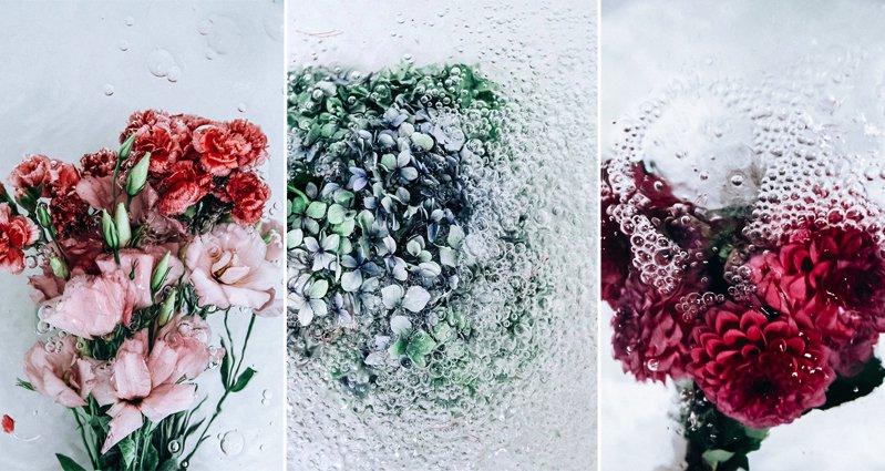 Photographer Lisa Sordini Captured These Beautiful Photos