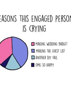 Wedding planning charts crying also funny that highlight the expectation vs reality of rh awesomeinventions