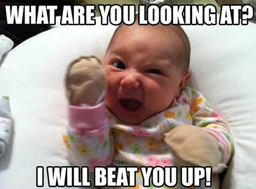 13 hilarious baby memes