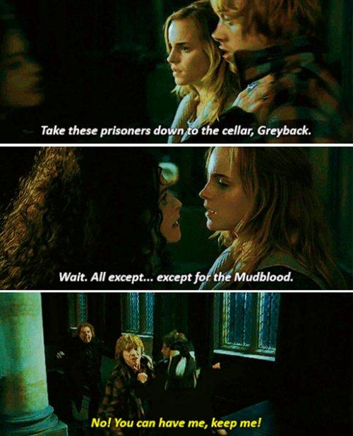 Hermione Granger Family Tree