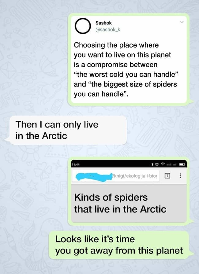 a-place-without-spiders-hilarious-twist-ending