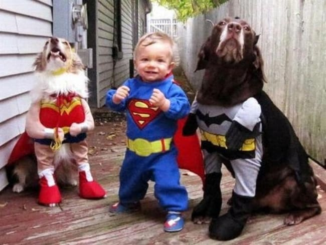 justice-league-baby-and-dogs-adorable-photos