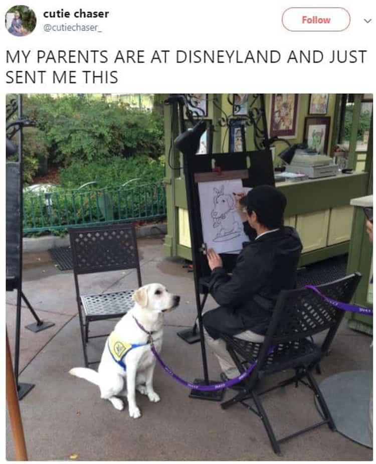 dog-caricature-at-disneyland-visually-pleasing-photos