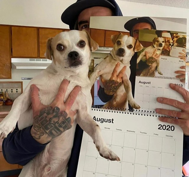 funny dog snapchats yearly tradition