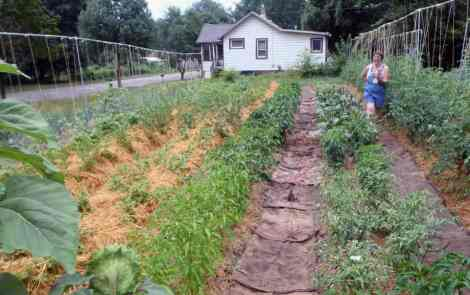 Ingham County Land Bank Garden Program