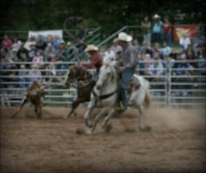 The Awesome Mitten- Great Lakes Rodeo