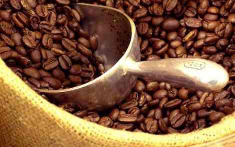 Coffee Roaster Round Up