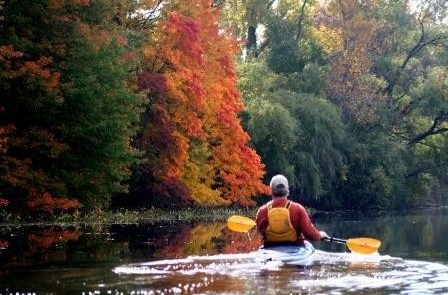 Top 5 Ways to Enjoy the Fall Colors in Jackson