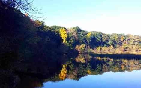 An Ann Arbor Autumn Along the Huron River