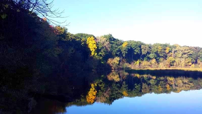 An Ann Arbor Autumn Along the Huron River
