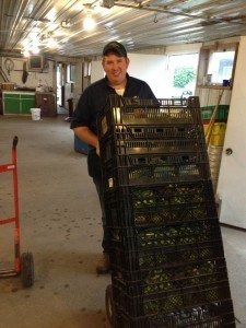 Case preparing restaurant orders for delivery, Photo Courtesy of Visser Farms