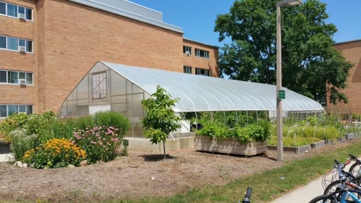 The Bailey GREENhouse grows food for the dining halls. Photo by Joel Heckaman - Awesome Mitten