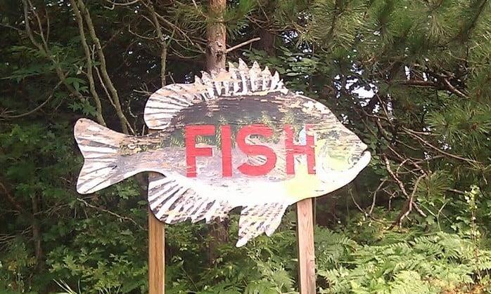 Bortell's Fish Fry perch dinner. Photo courtesy of Tim Chilcote