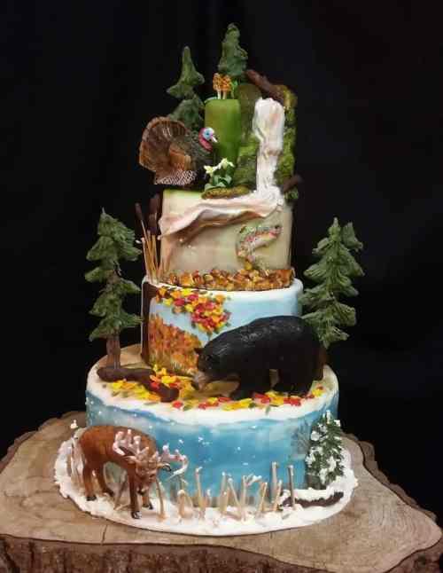 Christina's Cakery - Michigan Birthday Bakeoff - The Awesome mitten