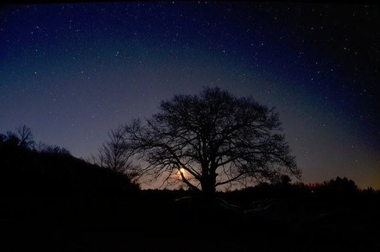 Dark Sky at Twilight. Photo courtesy of Headlands International Dark Sky Park