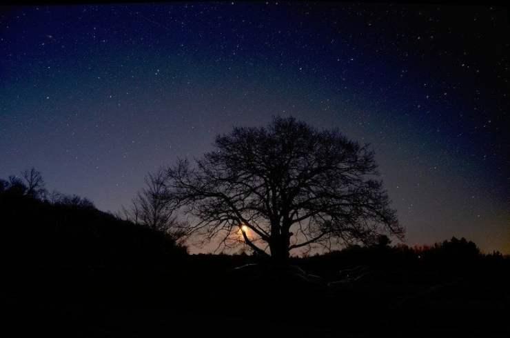 Dark Sky at Twilight. Photo courtesy of Headlands International Dark Sky Park
