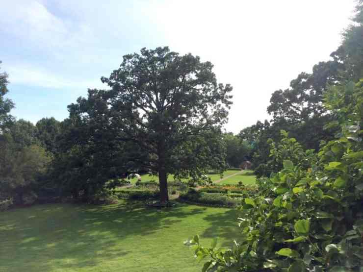 View of the expansive Applewood Estate. Photo courtesy of Joanna Dueweke.